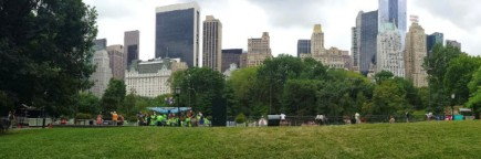 cropped-central-park-new-york1.jpg